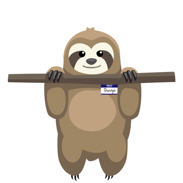 Dingo Web Services | Better Use Dingo!